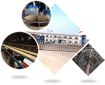 Braided hose factory and the main production line